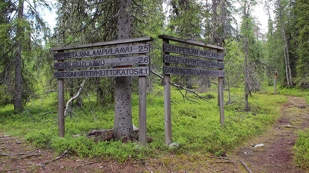 Guideposts at the crossroads of the trail. The posts are to Äitipetäjänlampi lean-to shelter, Kivikuru lean-to shelter and to Sotsonportti cooking shelter. Behind the posts are old spruces.