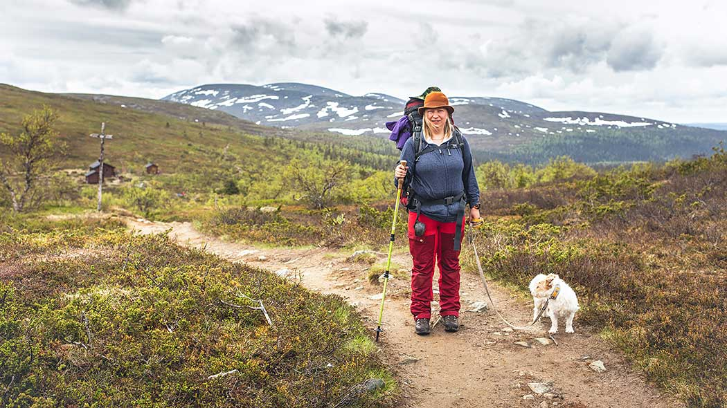 A hiker and a dog on a trail with fells in the background.