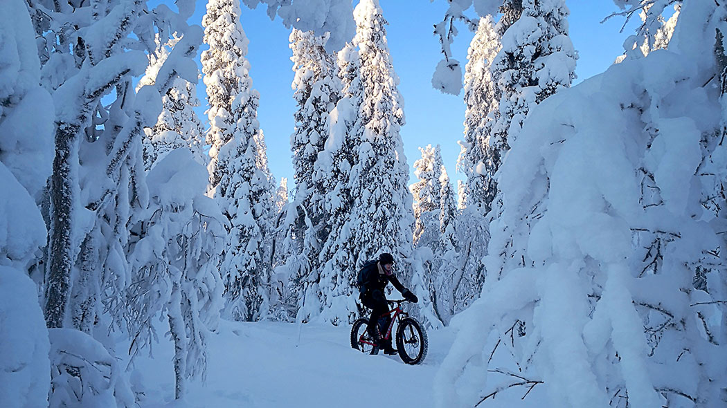 Cyclists in a forest with a lot of snow.