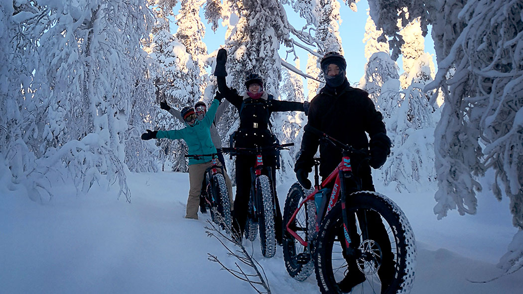 Four cyclists in a winter forest with trees in the background with heavy snow.