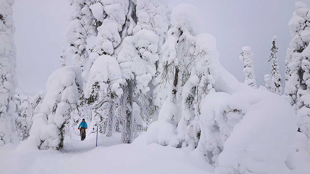 A cyclist with a mountain bike in a snowy forest