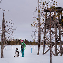 A person is standing with a dog on the leash next to a bird watching tower in winter landscape.