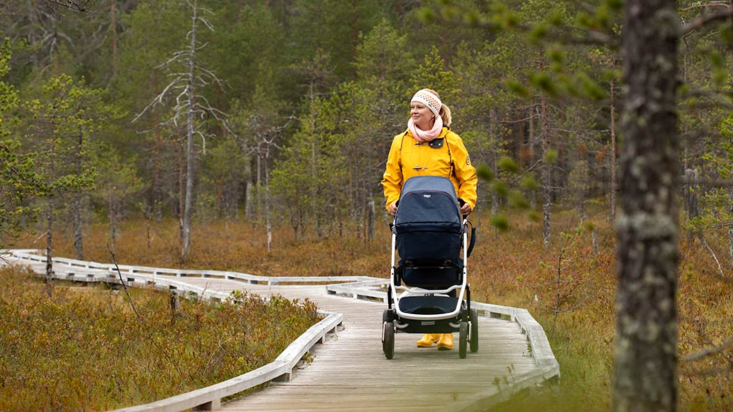 A woman is pushing a stroller on wooden walkways in the middle of a swamp.