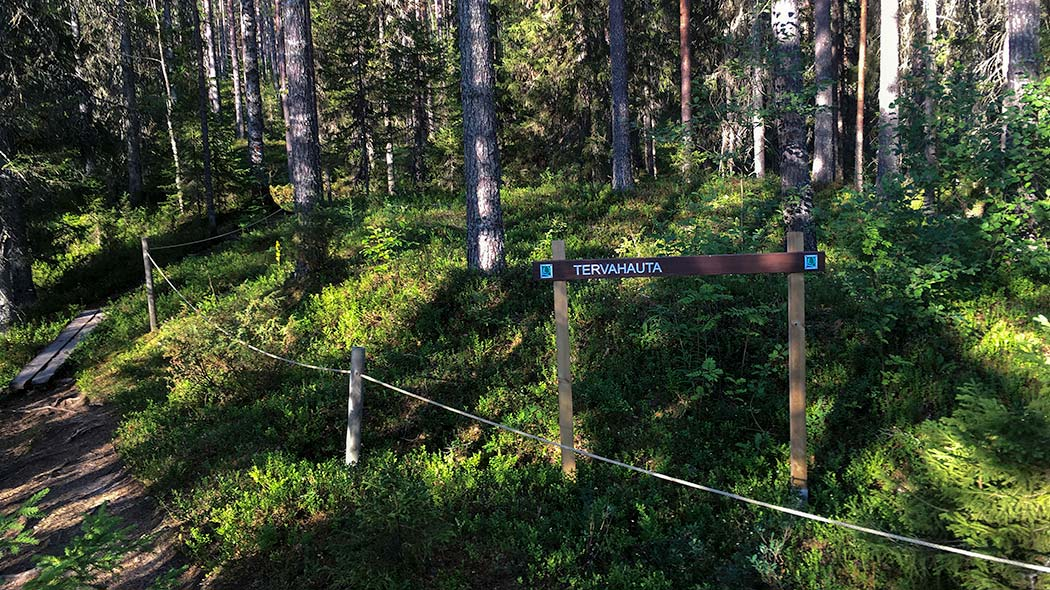 "In a coniferous forest, behind a rope railing by the trail, there is a wooden signpost with a text ""Tervahauta"", a tar burning pit."