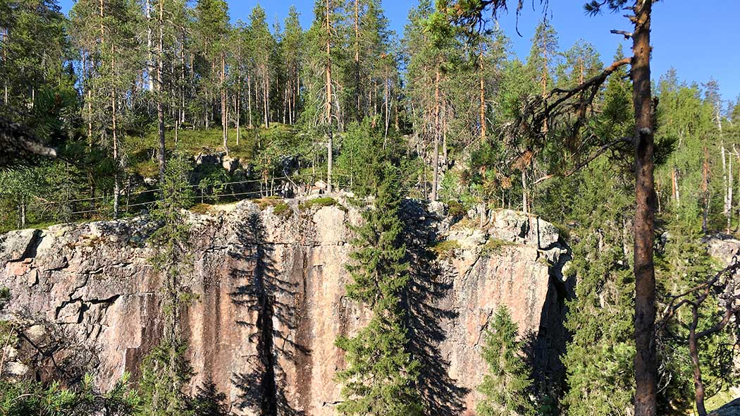 A huge vertical rock wall. There are some spruces and pines in the front, and coniferous forest on the top of the cliff.